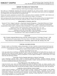 Senior Resume Template 11 Best Senior It Project Manager Resume Examples