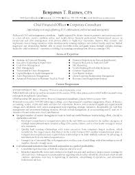Executive Resume Summary Examples Resume Skills Examples Laborer