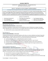 sales executive director resume sample