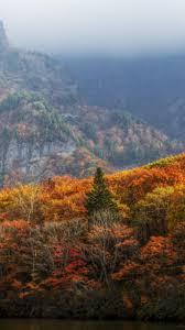autumn mountains backgrounds. Autumn Nature Mountain Iphone 6 Wallpapers HD Mountains Backgrounds
