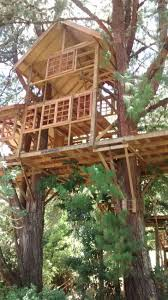 Treehouses, Architecture Interior Design, Forts, Nest, Cabins, Treehouse,  Tree Forts, Tree Houses