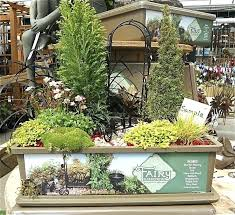 fairy garden kits for kids miniature gardening at the big garden centers the mini garden guru