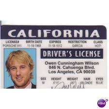 Wilson Midnight Costume Realistic Ireland In For Id 64106925 Paris Owen Drivers Halloween On License Ebid