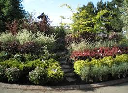 denver garden centers. Colorado Trees, Shrubs, Flowering Tagawa Gardens Nursery \u0026 Garden Center Denver Centers