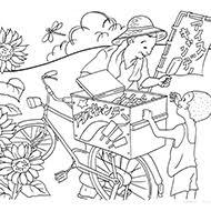 夏の塗り絵素材一覧大人の塗り絵教室無料my介護の広場