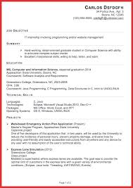 Resume It Professional Susanireland Lovely Internship Resumes Types Of Letter