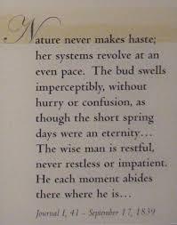 joyce carol oates against nature  henry david thoreau 1854