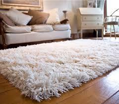 Shaggy rug types BlogBeen
