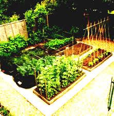 window of knowledge terrace vegetable garden in kurakar house