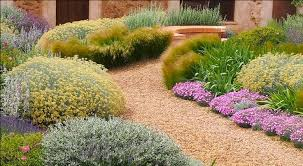 Small Picture Proposal plants for landscaping dry garden MB Garden Design
