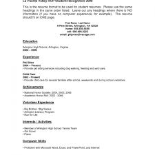 Resume Examples No Job Experience Resume Templates Design For Job