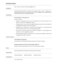 Sample Auditor Resumes Senior Auditor Resume Examples Internal Sample Bank Samples Audit