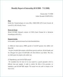 Internship Report Sample Impressive Monthly Summary Report Template Tangledbeard