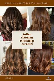 Copper Brown Hair Color Chart How To Choose The Best Hair Colour From Hair Colour Charts