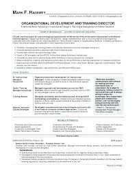 Insurance Coordinator Resume Delectable Office Manager Resume Template Letsdeliverco