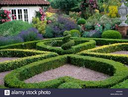 Small Picture Fine Garden Design Hedges Short French Boxwood Hedge Ideas