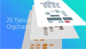 25 Typical Orgcharts How To Draw A Matrix Organizational