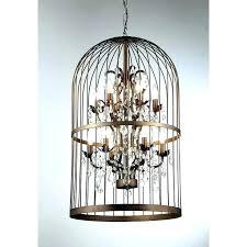 birdcage chandelier bird birdcage chandelier light