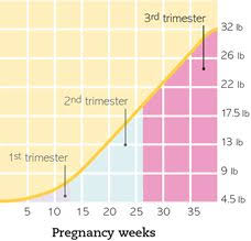 Pregnancy Weight Chart Pregnancy Weight Gain Calculator By Week Babymed Com