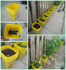 diy self watering container garden instructions gardening tips to grow tomatoes in containers