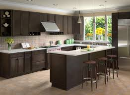 Dark Shaker Kitchen Cabinets Doors For Kitchen Cabinets Maxphotous Design Porter