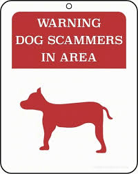 online dating scams names for dogs