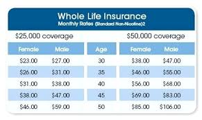 permanent life insurance quotes online