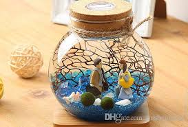 Moss Balls Wedding Decor Fascinating Marimo Aquarium Kit With Led Light Glass Jar32 Japanese Moss Balls