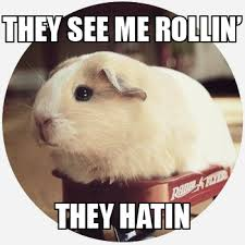 They See Me Rollin They Hatin Emoji What Does They See Me Rollin Mean Slang By Dictionary Com
