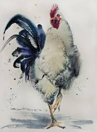 white rooster 28 38 sm watercolor on paper olga flerova sold