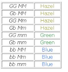 Eye Gene Chart Understanding Genetics