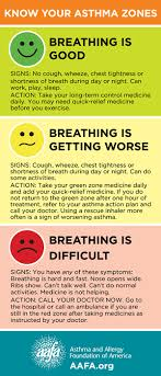 Asthma Zone Chart Know Your Asthma Zones Asthma Cure Childhood Asthma