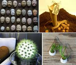 Plant Outside the Box: 14 Strange & Unusual Gardening Products - WebEcoist