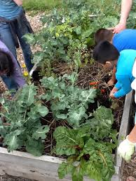 why garden in school part clearing a resource journal of figure 3 students and teachers search for critters aka decomposers in the