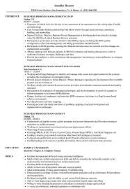 Download Business Process Management Resume Sample as Image file