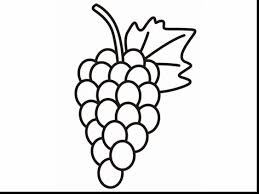 Small Picture Brilliant Grapes Coloring Pages Printable With Best Of Grapes