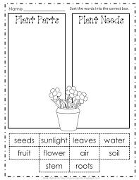 Plants Needs Worksheet Kindergarten Soil – silversearch.info