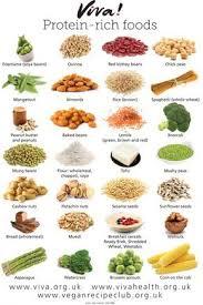 Vegan Protein Rich Foods High Protein Foods List Protein