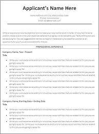 Professional Resume Template Microsoft Word 2010 Resume Template