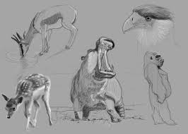Sketches Animal Artstation Animal Digital Sketching Mikael Lav