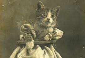10 Weird Ways Cats Have Been Venerated Through History - Listverse via Relatably.com