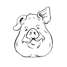 pig pictures to draw pig head drawing how to draw a pigs head draw pig head