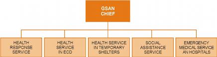 Medical Group Practice Organizational Chart Medical Group Organization Chart Download Scientific Diagram
