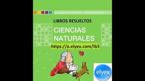 Ciencias naturales libro de primaria grado 6 catálogo de libros de educación básica. Libros De Ciencias Naturales Resueltos Mineduc 2021 Ecu11