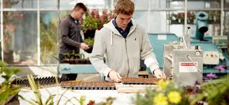 Online Garden Design Courses Stunning Horticulture Askham Bryan College
