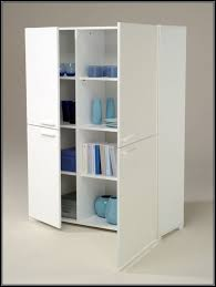 contemporary home storage organization with white laminated wooden 2 door raised panel cabinet and durable material
