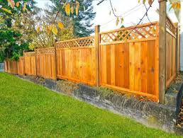 Backyard Fence Design Cool 48 Great Privacy Fence Ideas And Designs PICTURES