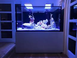 merry from uk gary has shared a photo with us of his new reef tank using our atlantik led lights gary chose our units based on quality