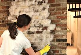 Best Fireplace Brick Cleaner  Brick AnewCleaning Brick Fireplace Front