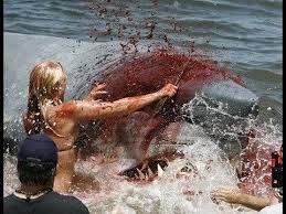great white sharks eating people alive. Delighful White SHOCKING Shark Eats Man Alive Cam Footage HD With Great White Sharks Eating People Alive A